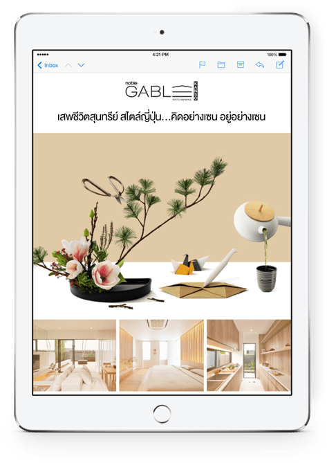 Noble development customers email marketing campaign on iPad
